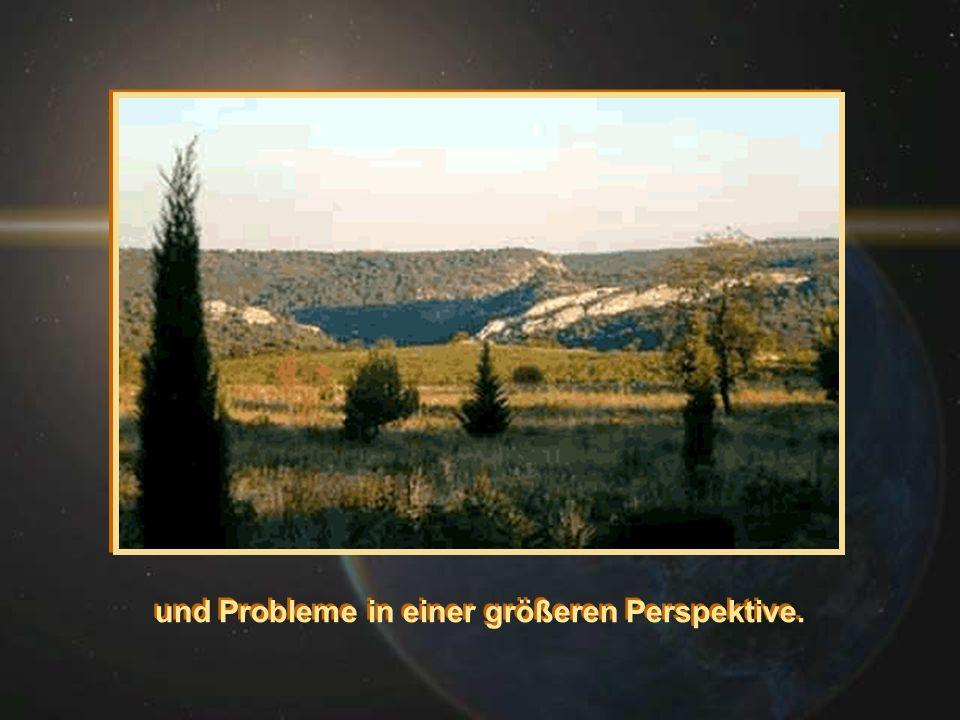 und Probleme in einer größeren Perspektive.