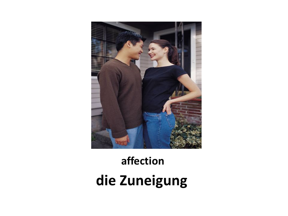 affection die Zuneigung