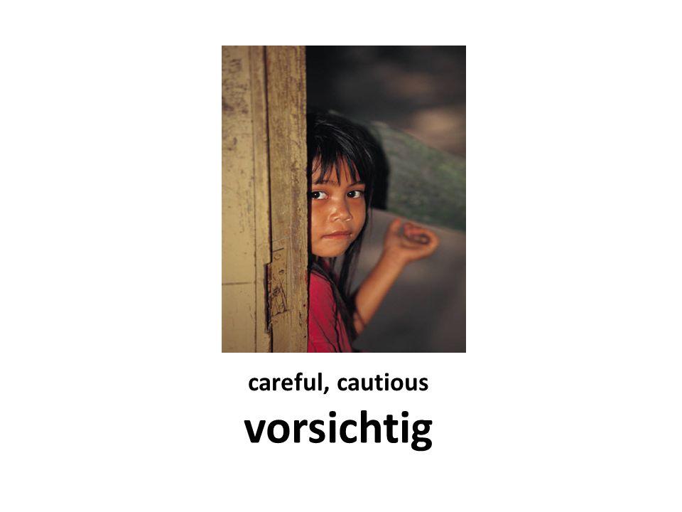 careful, cautious vorsichtig