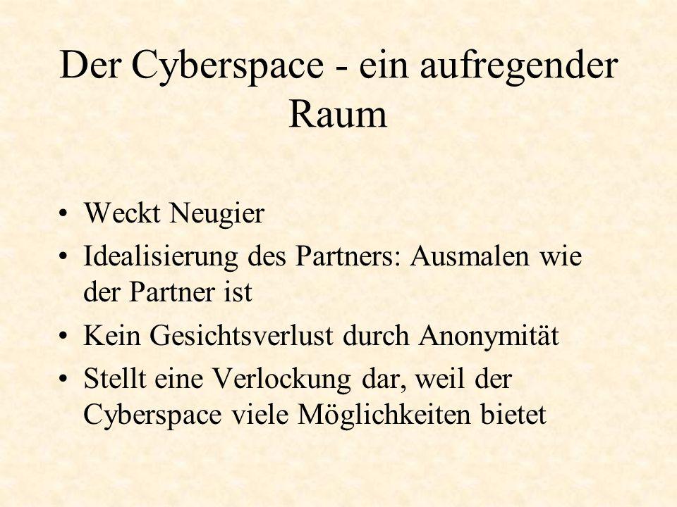 Die Gefahren des Cyberspace Reale Gefühle entstehen Scheinanonymität, weil die Daten theoretisch öffentlich gemacht werden können Flucht in den Cyberspace bei Vernachlässigung der Offline-Beziehungen Enttäuschung Erfüllung Die Grenzen zwischen realem und virtuellem Leben verschwimmen