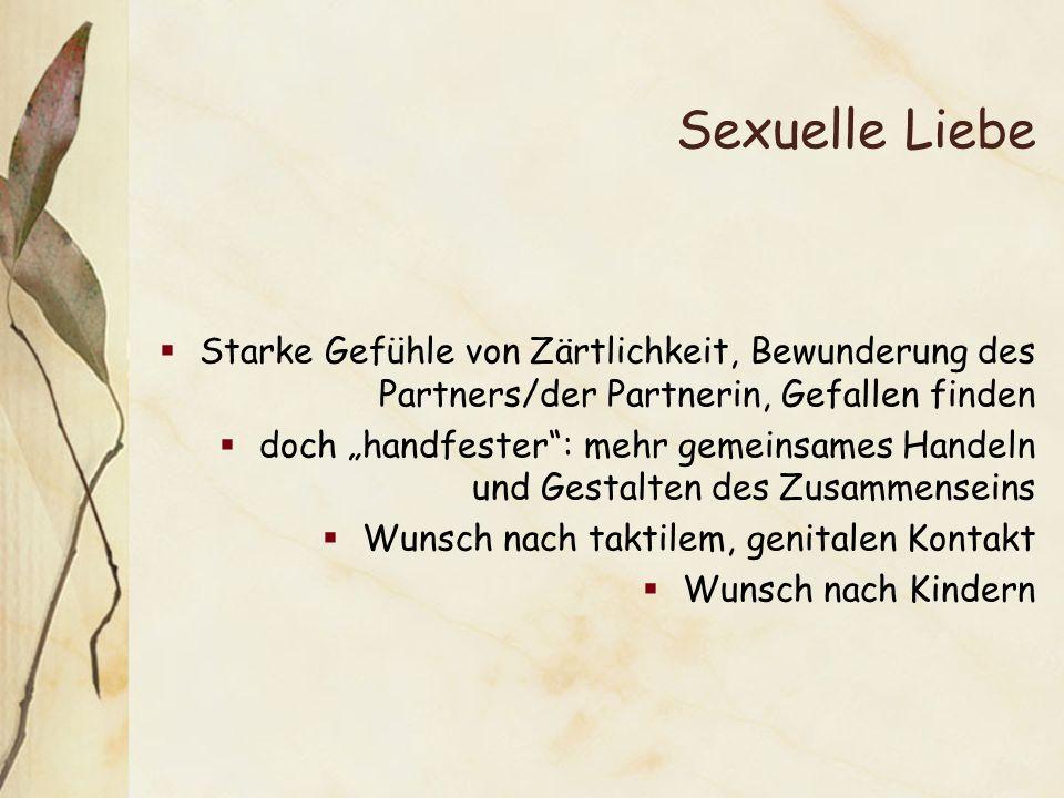 Sexuelle Liebe Starke Gefühle von Zärtlichkeit, Bewunderung des Partners/der Partnerin, Gefallen finden doch handfester: mehr gemeinsames Handeln und