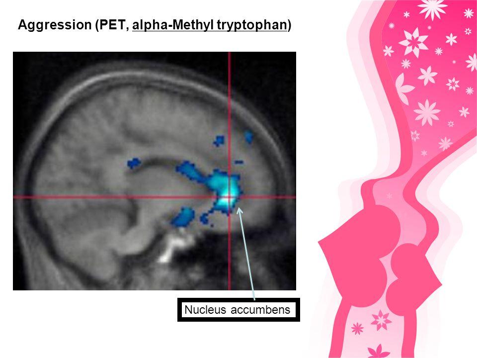 Spezifizität der Rezeptorbindung / Liebe Abhängige Liebe Serotonerge Projektionen in den präfrontalen Cortex und die spezifische Bindung an den Typ 2 Serotonin Rezeptor impulsive Aggressivität liebesbedingte Manie und Stalking.