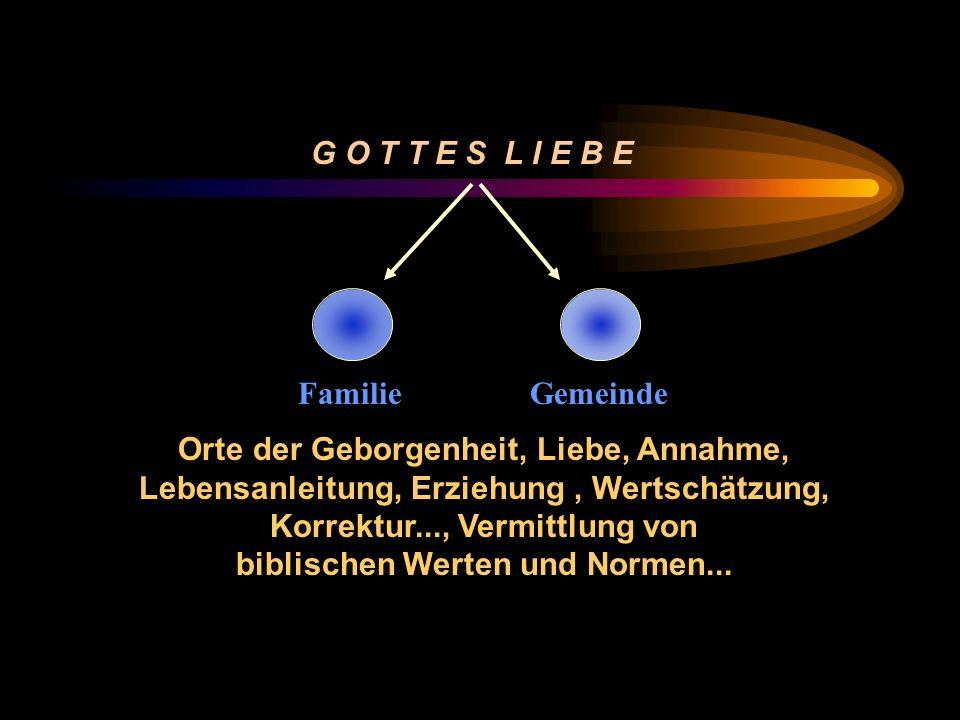 G O T T E S L I E B E FamilieGemeinde Orte der Geborgenheit, Liebe, Annahme, Lebensanleitung, Erziehung, Wertschätzung, Korrektur..., Vermittlung von biblischen Werten und Normen...