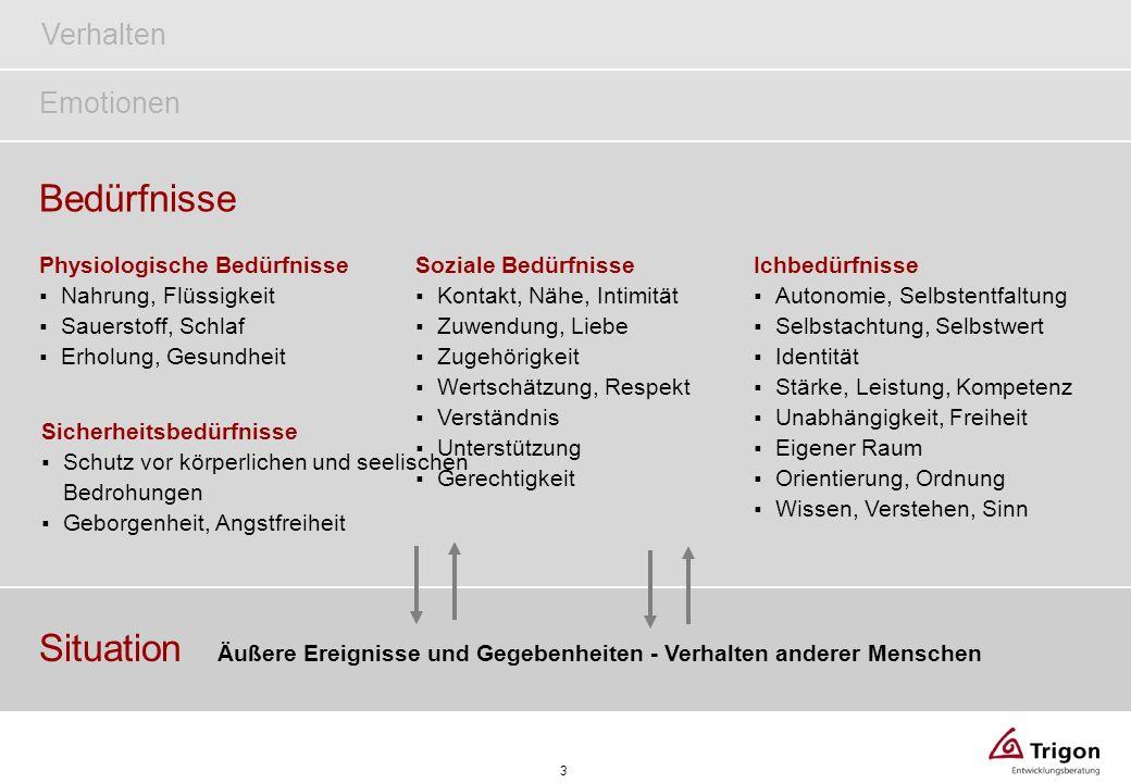 14 Systemkonzept Team – Handlungsansätze finden (nach Christina von Passavant angelehnt an F.