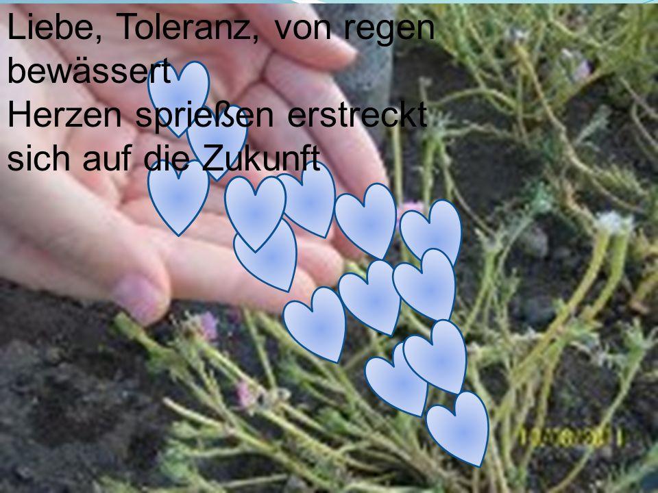 Liebe, Toleranz, von regen bewässert Herzen sprießen erstreckt sich auf die Zukunft