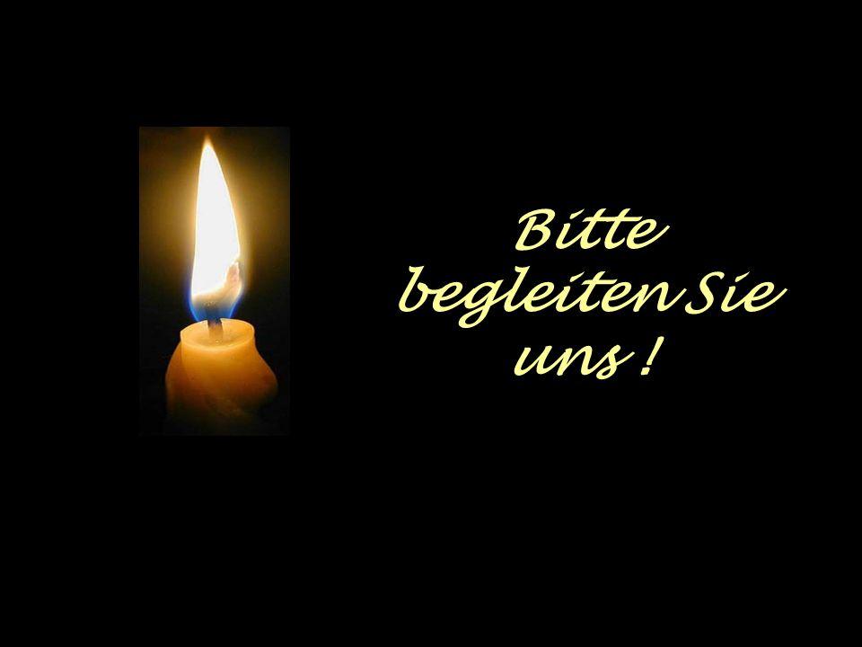 Einen Tag vorher, also am 09.09.2007 um 20:00 Uhr laufen wir mit unseren Kerzen der Zuversicht vom Dom zu Speyer zum Institut St. Dominikus !