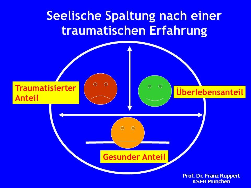 Prof. Dr. Franz Ruppert KSFH München Seelische Spaltung nach einer traumatischen Erfahrung Traumatisierter Anteil Gesunder Anteil Überlebensanteil