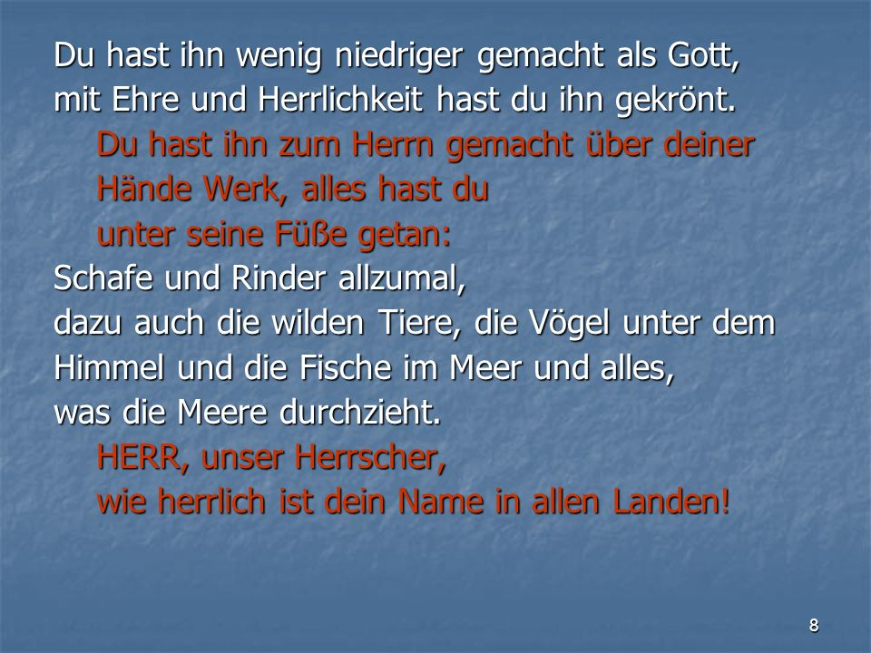 19 Lesung Paul Oestreicher (*1931)