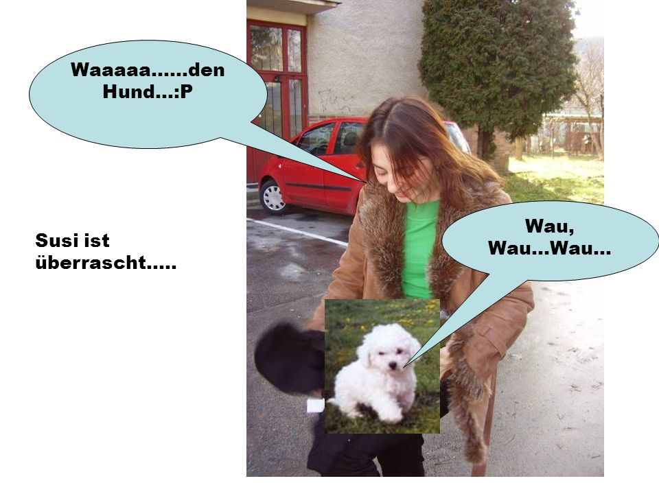 Wau, Wau...Wau... Waaaaa......den Hund...:P Susi ist überrascht.....