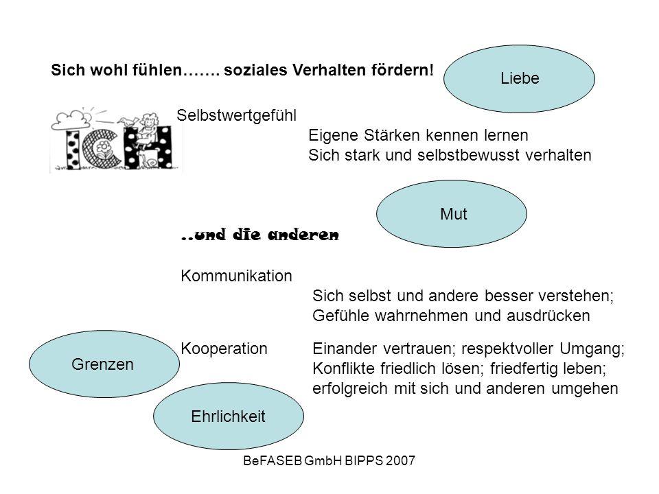 BeFASEB GmbH BIPPS 2007 KooperationEinander vertrauen; respektvoller Umgang; Konflikte friedlich lösen; friedfertig leben; erfolgreich mit sich und anderen umgehen Sich wohl fühlen…….
