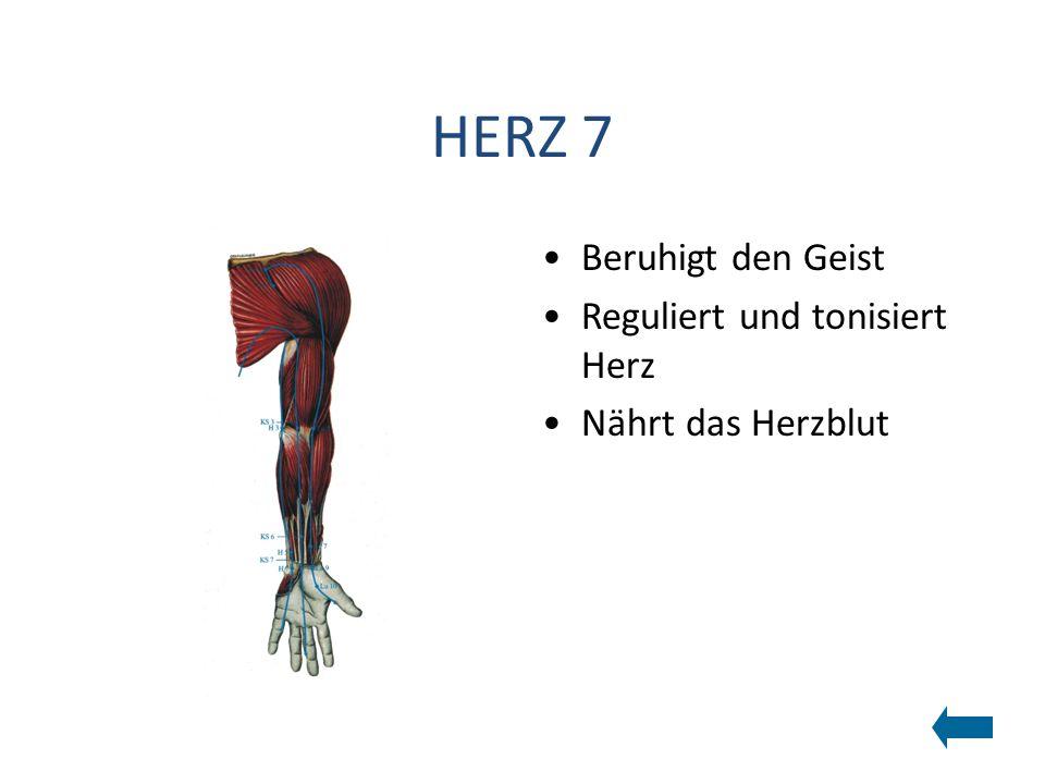 HERZ 7 Beruhigt den Geist Reguliert und tonisiert Herz Nährt das Herzblut