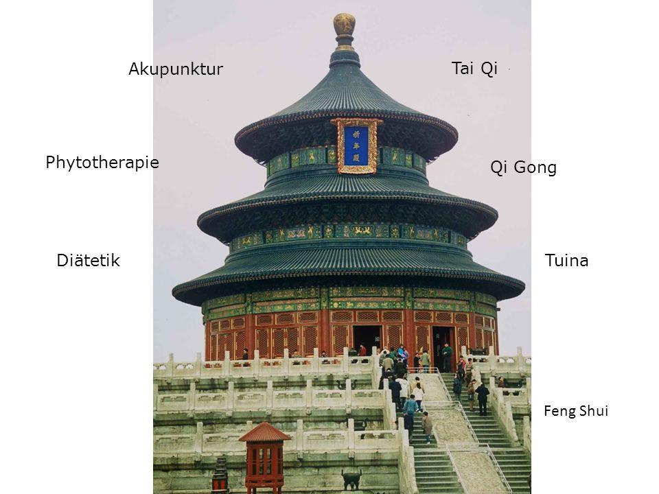 Akupunktur Phytotherapie Diätetik Tai Qi Qi Gong Tuina Feng Shui