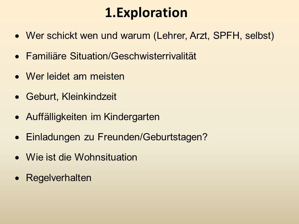 1.Exploration Wer schickt wen und warum (Lehrer, Arzt, SPFH, selbst) Familiäre Situation/Geschwisterrivalität Wer leidet am meisten Geburt, Kleinkindz