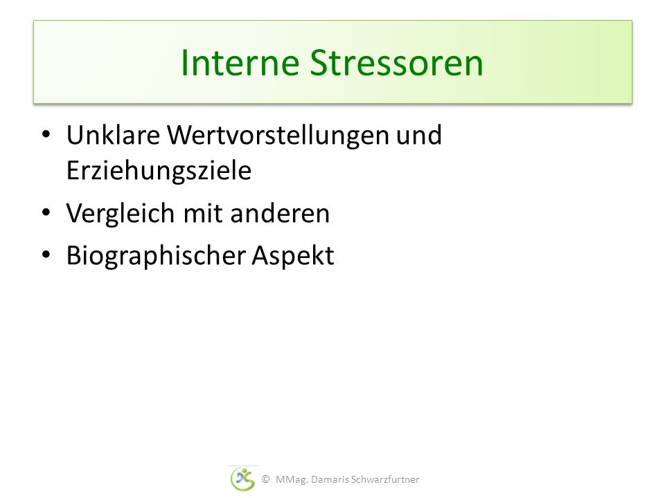 Interne Stressoren Unklare Wertvorstellungen und Erziehungsziele Vergleich mit anderen Biographischer Aspekt © MMag. Damaris Schwarzfurtner
