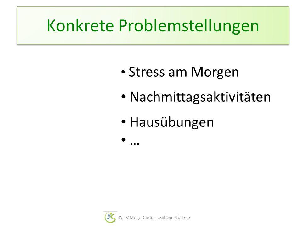 Konkrete Problemstellungen Stress am Morgen Nachmittagsaktivitäten Hausübungen … © MMag. Damaris Schwarzfurtner