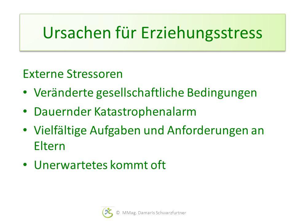 Ursachen für Erziehungsstress Externe Stressoren Veränderte gesellschaftliche Bedingungen Dauernder Katastrophenalarm Vielfältige Aufgaben und Anforde