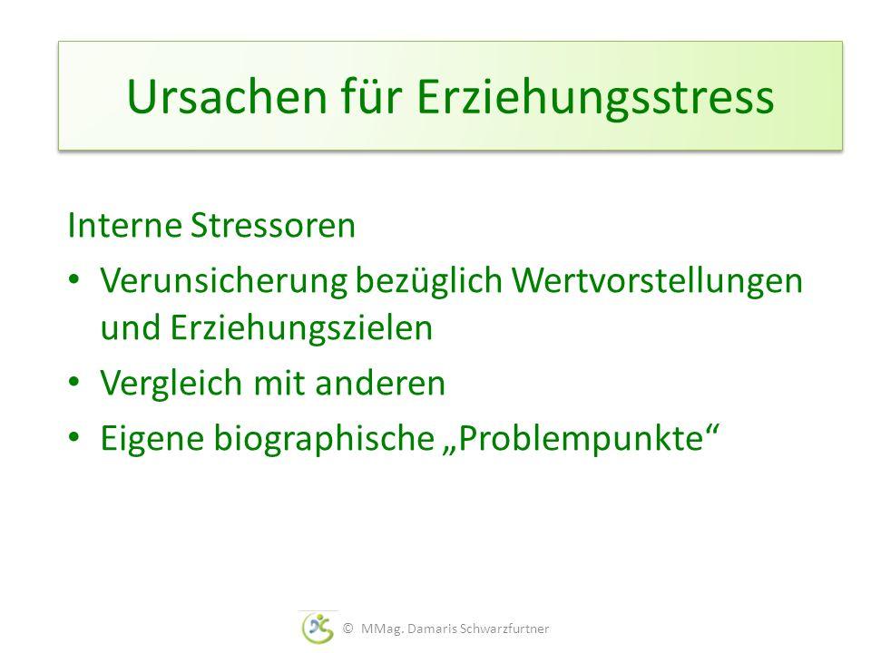 Ursachen für Erziehungsstress Interne Stressoren Verunsicherung bezüglich Wertvorstellungen und Erziehungszielen Vergleich mit anderen Eigene biograph
