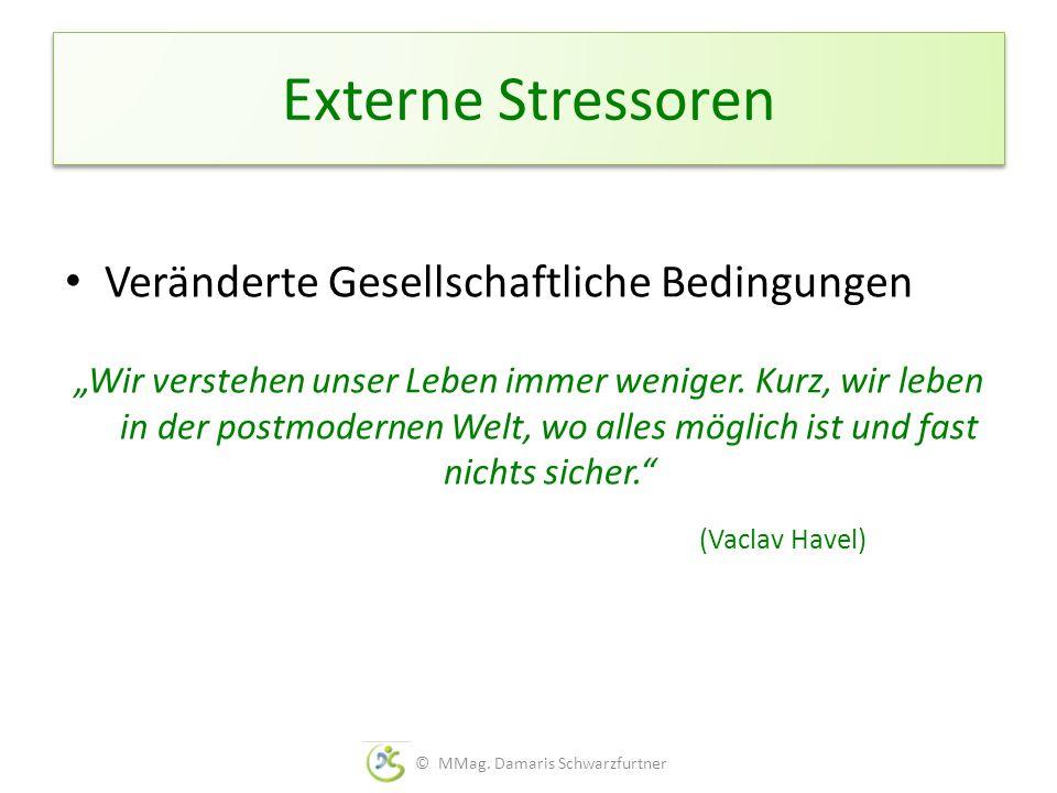 Externe Stressoren Veränderte Gesellschaftliche Bedingungen Wir verstehen unser Leben immer weniger. Kurz, wir leben in der postmodernen Welt, wo alle