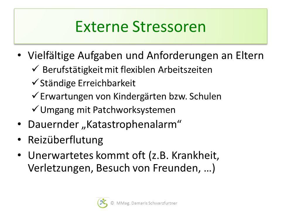 Externe Stressoren Vielfältige Aufgaben und Anforderungen an Eltern Berufstätigkeit mit flexiblen Arbeitszeiten Ständige Erreichbarkeit Erwartungen vo