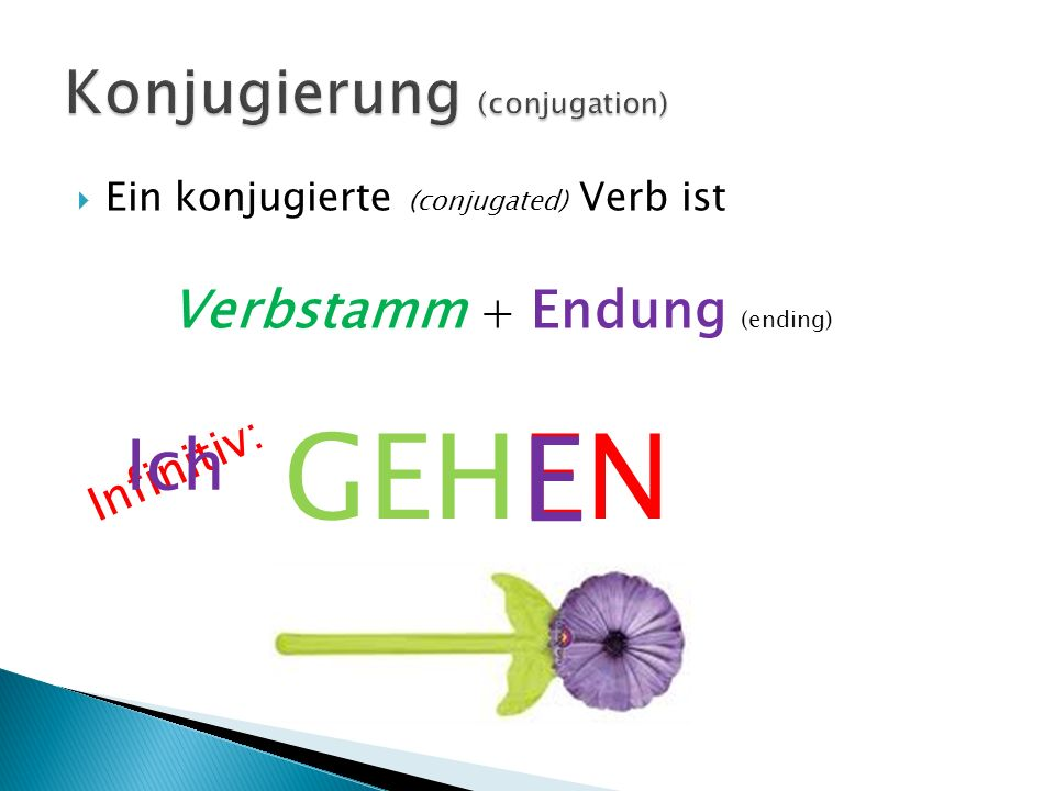 Ein konjugierte (conjugated) Verb ist Verbstamm + Endung (ending) GEHEN Infinitiv: Ich E