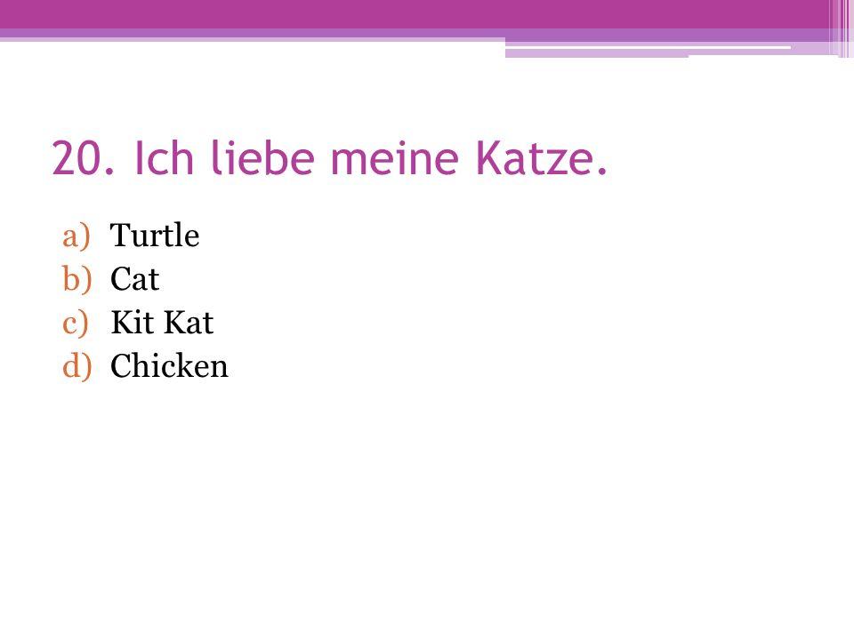 20. Ich liebe meine Katze. a)Turtle b)Cat c)Kit Kat d)Chicken