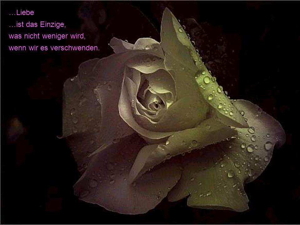 , Die Liebe ist ein Stoff, den die Natur gewebt und die Phantasie bestickt hat.