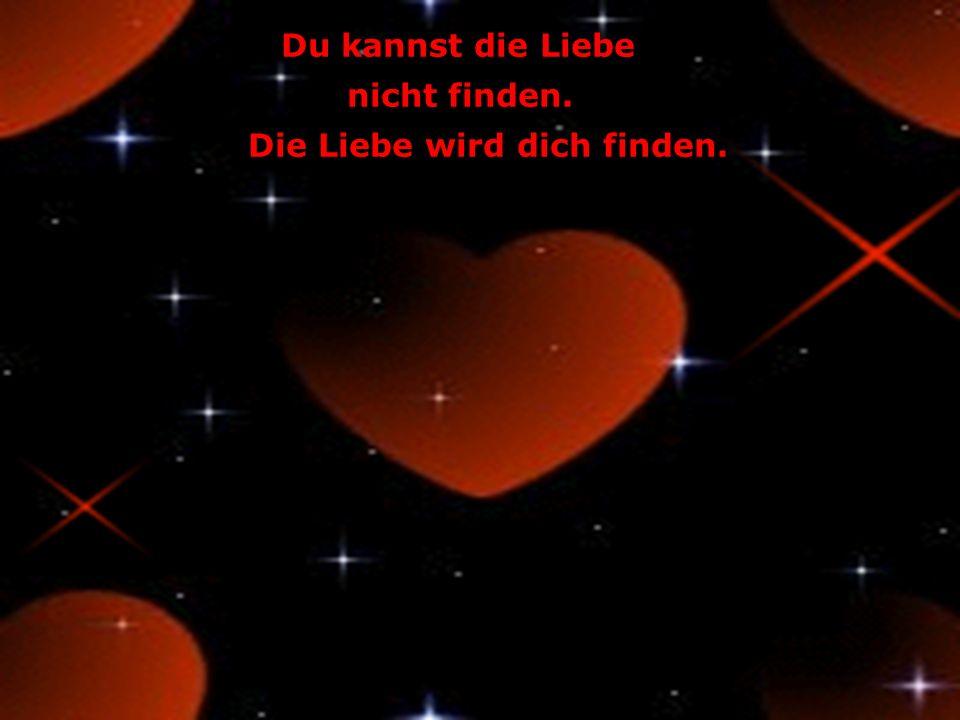 Du kannst die Liebe nicht finden. Die Liebe wird dich finden.