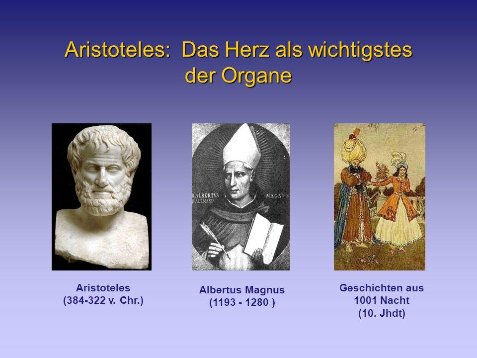 Aristoteles: Das Herz als wichtigstes der Organe Albertus Magnus (1193 - 1280 ) Geschichten aus 1001 Nacht (10.