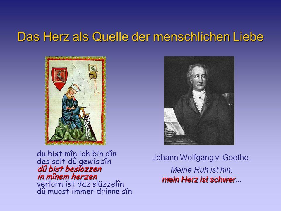 Das Herz als Quelle der menschlichen Liebe Johann Wolfgang v.