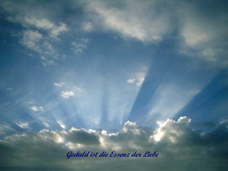 Ausbildung 2009 bis 2012 in Dekonditionierung- und Energiearbeit Mind-Healing Gemeinschaftsbildung Photo: Light shining through