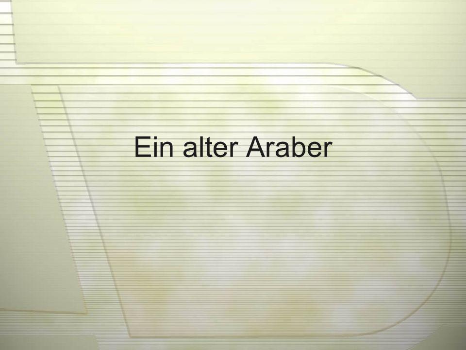 Ein alter Araber