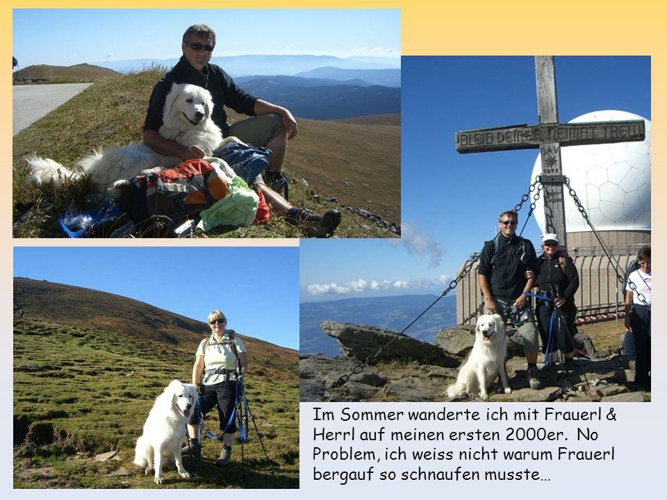Im Sommer wanderte ich mit Frauerl & Herrl auf meinen ersten 2000er. No Problem, ich weiss nicht warum Frauerl bergauf so schnaufen musste…