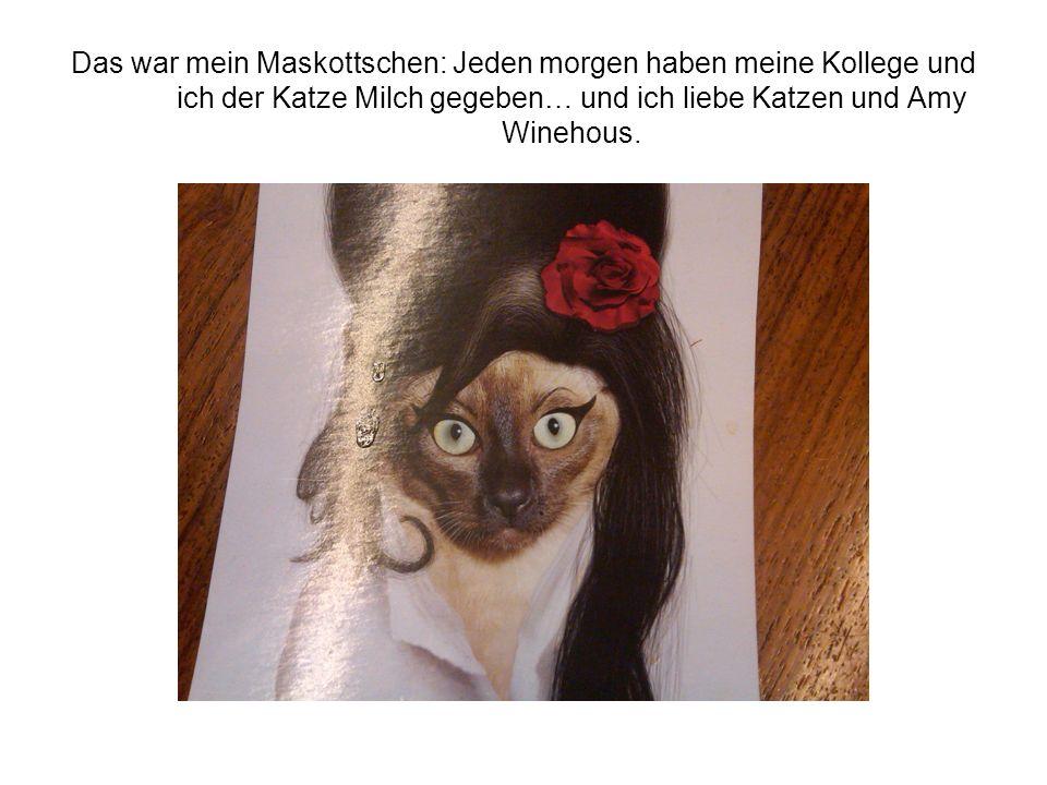 Das war mein Maskottschen: Jeden morgen haben meine Kollege und ich der Katze Milch gegeben… und ich liebe Katzen und Amy Winehous.