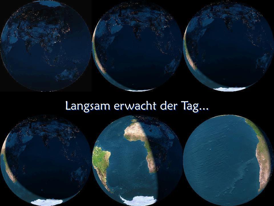 Die erleuchtete Erde bei Nacht D1910