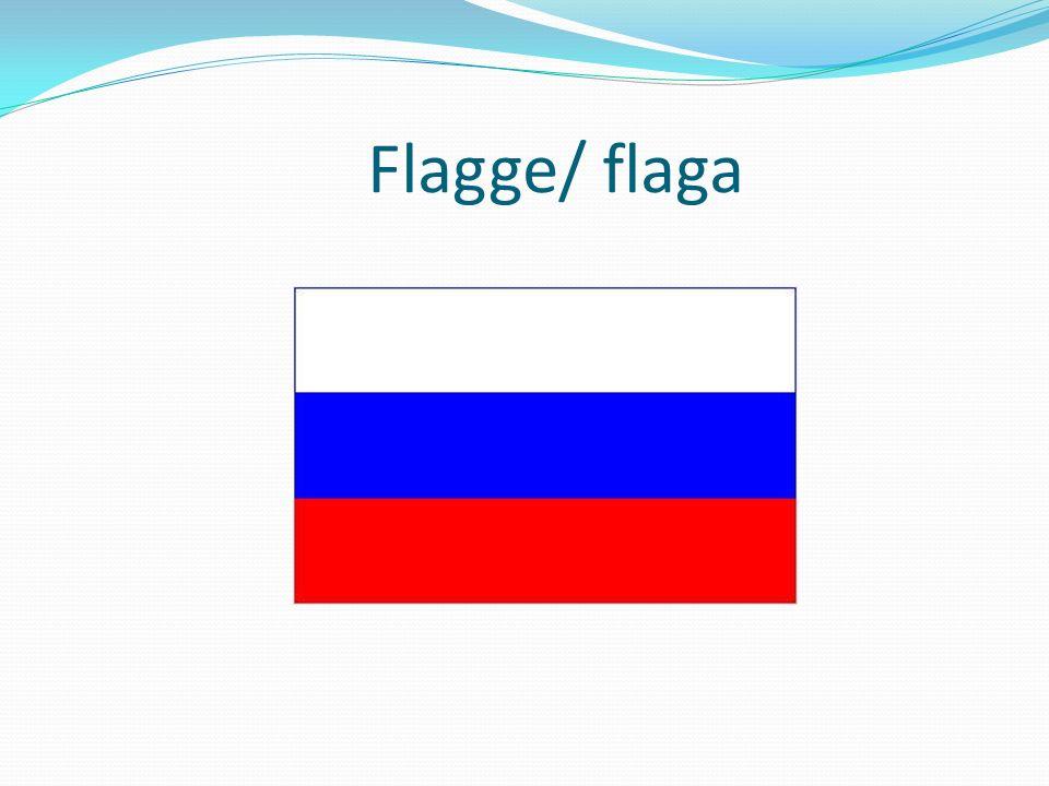 Flagge/ flaga