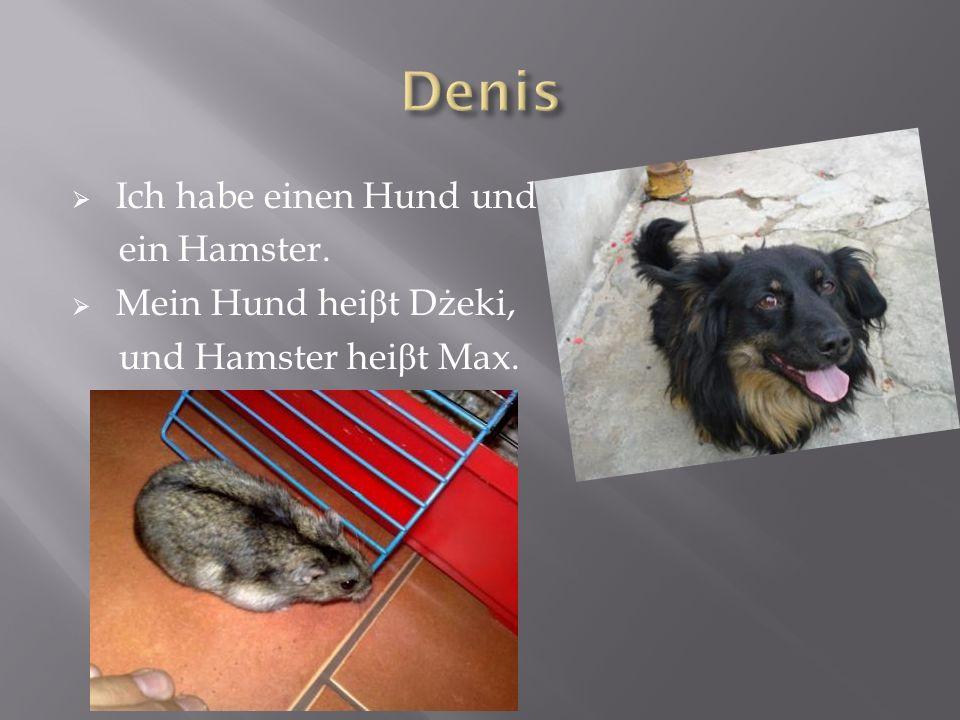 Ich habe einen Hund und ein Hamster. Mein Hund hei β t Dżeki, und Hamster hei β t Max.