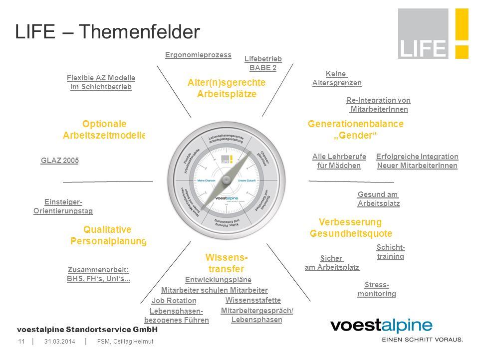    voestalpine Standortservice GmbH 1131.03.2014FSM, Csillag Helmut LIFE – Themenfelder Verbesserung Gesundheitsquote Stress- monitoring Gesund am Arb