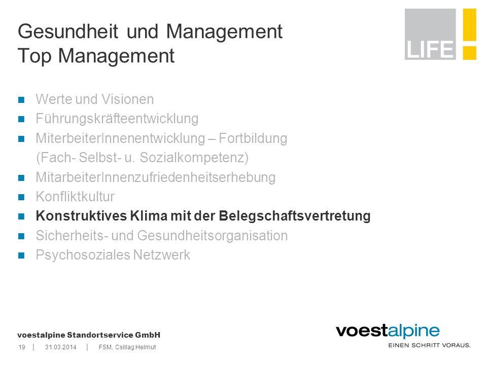    voestalpine Standortservice GmbH 1931.03.2014FSM, Csillag Helmut Gesundheit und Management Top Management Werte und Visionen Führungskräfteentwickl