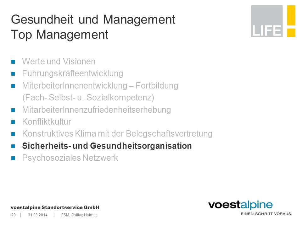    voestalpine Standortservice GmbH 2031.03.2014FSM, Csillag Helmut Gesundheit und Management Top Management Werte und Visionen Führungskräfteentwickl