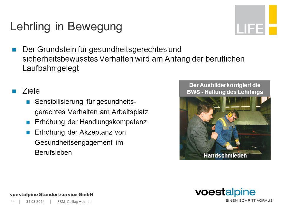    voestalpine Standortservice GmbH 4431.03.2014FSM, Csillag Helmut Lehrling in Bewegung Der Grundstein für gesundheitsgerechtes und sicherheitsbewuss