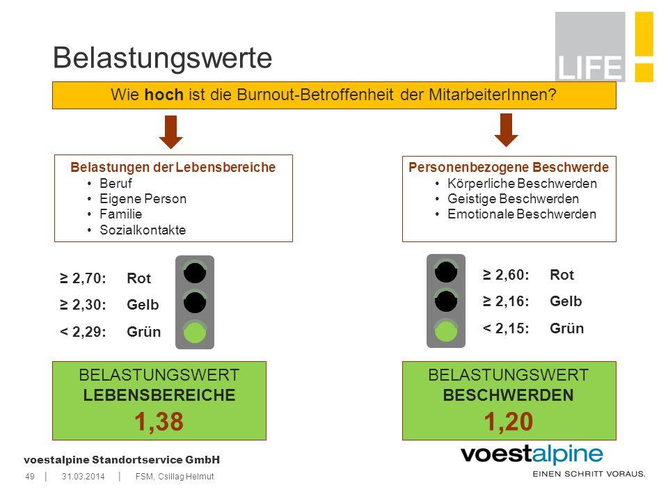    voestalpine Standortservice GmbH Belastungswerte Wie hoch ist die Burnout-Betroffenheit der MitarbeiterInnen? Belastungen der Lebensbereiche Beruf