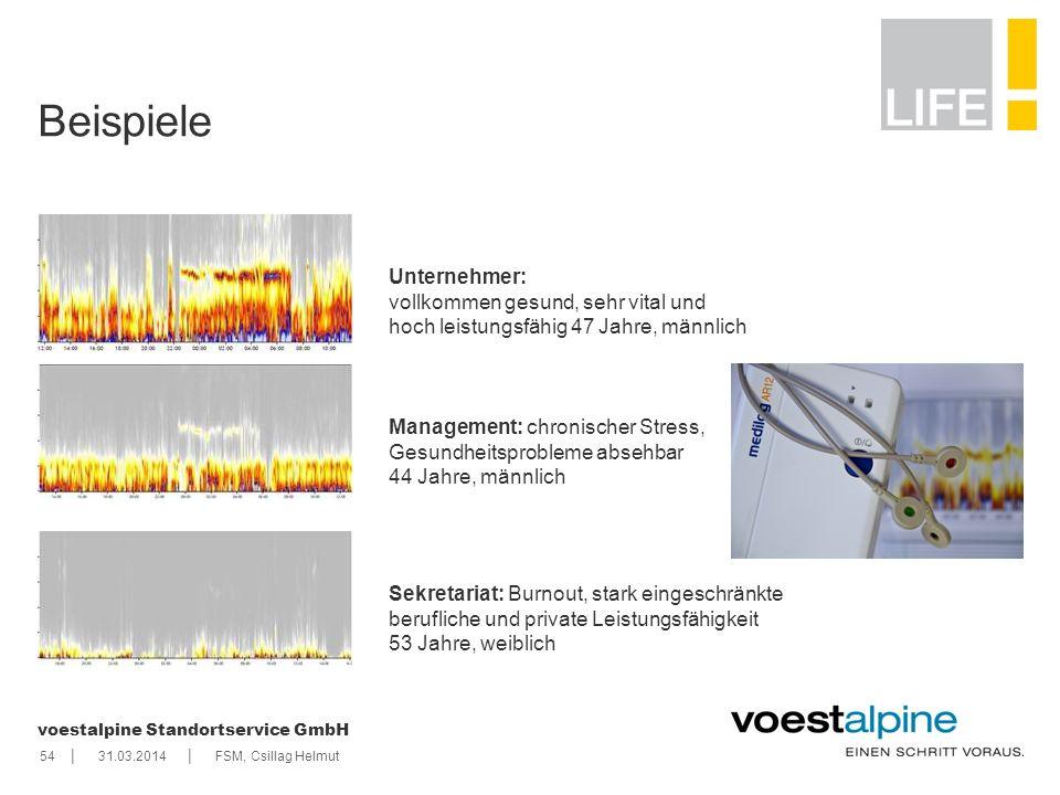 || voestalpine Standortservice GmbH 5431.03.2014FSM, Csillag Helmut Beispiele Unternehmer: vollkommen gesund, sehr vital und hoch leistungsfähig 47 Ja