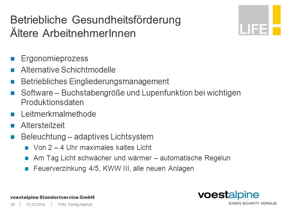 || voestalpine Standortservice GmbH 5531.03.2014FSM, Csillag Helmut Betriebliche Gesundheitsförderung Ältere ArbeitnehmerInnen Ergonomieprozess Altern