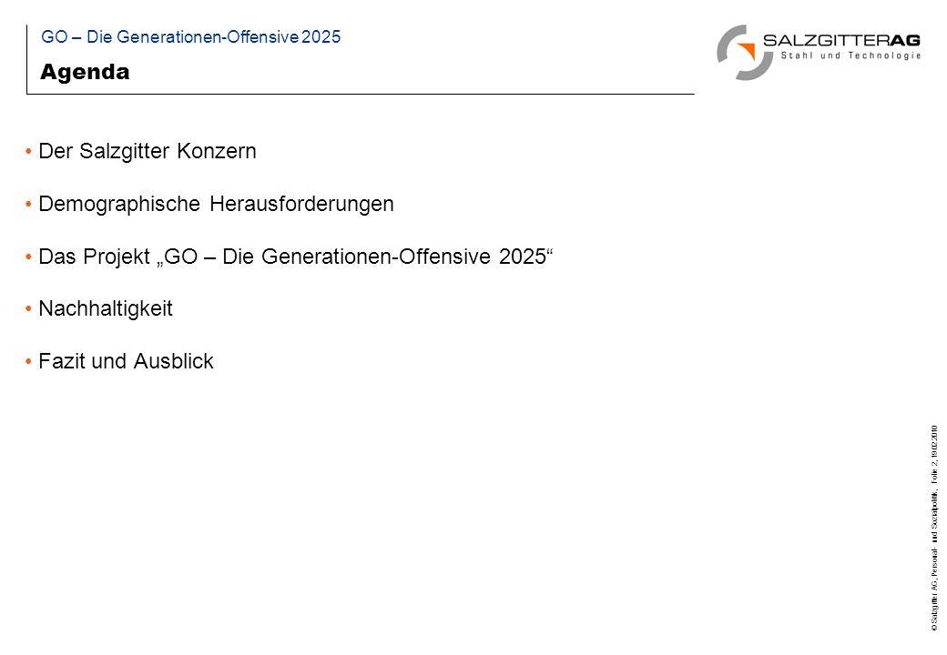 © Salzgitter AG, Personal- und Sozialpolitik, Folie 2, 19.02.2010 Agenda Der Salzgitter Konzern Demographische Herausforderungen Das Projekt GO – Die Generationen-Offensive 2025 Nachhaltigkeit Fazit und Ausblick GO – Die Generationen-Offensive 2025
