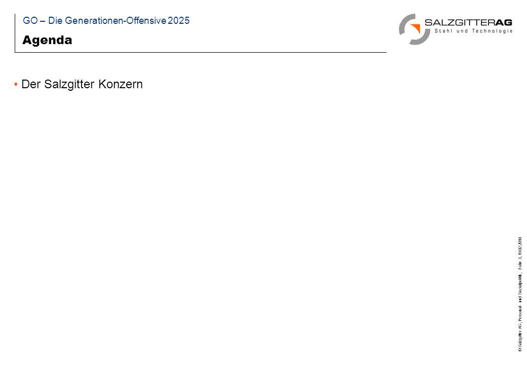 © Salzgitter AG, Personal- und Sozialpolitik, Folie 14, 19.02.2010 Projektziele Auseinandersetzung mit und Analyse der Folgen des demographischen Wandels im Allgemeinen und für den Konzern im Speziellen.