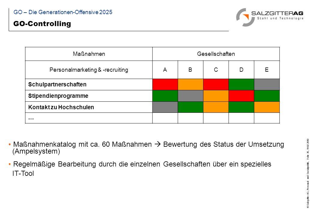 © Salzgitter AG, Personal- und Sozialpolitik, Folie 36, 19.02.2010 Maßnahmenkatalog mit ca.