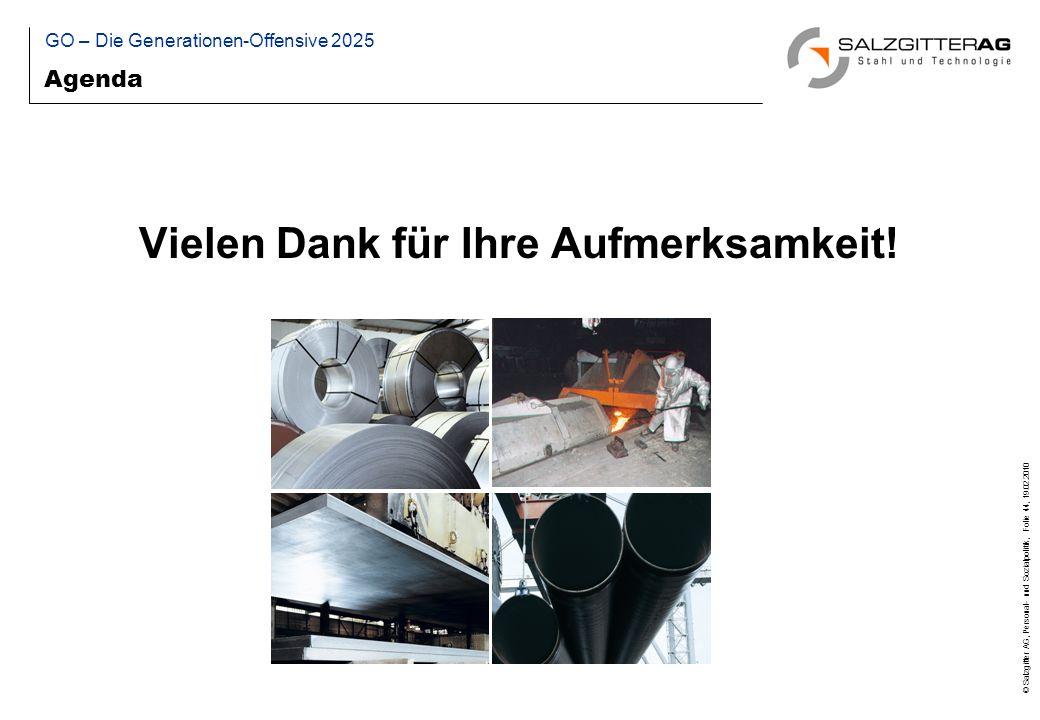 © Salzgitter AG, Personal- und Sozialpolitik, Folie 44, 19.02.2010 Agenda GO – Die Generationen-Offensive 2025 Vielen Dank für Ihre Aufmerksamkeit!