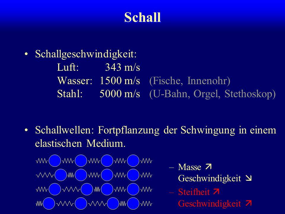 Schall Schallwellen: Fortpflanzung der Schwingung in einem elastischen Medium. –Masse Geschwindigkeit –Steifheit Geschwindigkeit Schallgeschwindigkeit