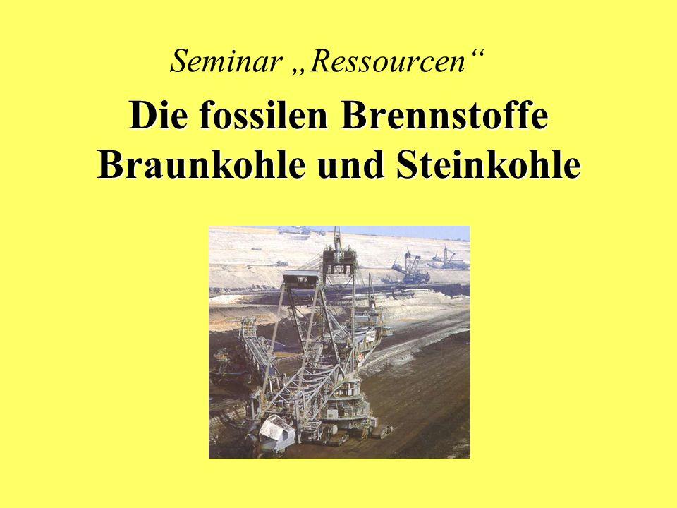 Seminar Ressourcen Die fossilen Brennstoffe Braunkohle und Steinkohle
