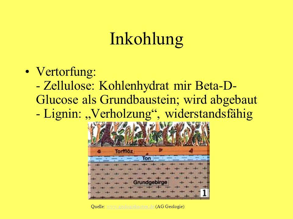 Inkohlung Vertorfung: - Zellulose: Kohlenhydrat mir Beta-D- Glucose als Grundbaustein; wird abgebaut - Lignin: Verholzung, widerstandsfähig Quelle: ww